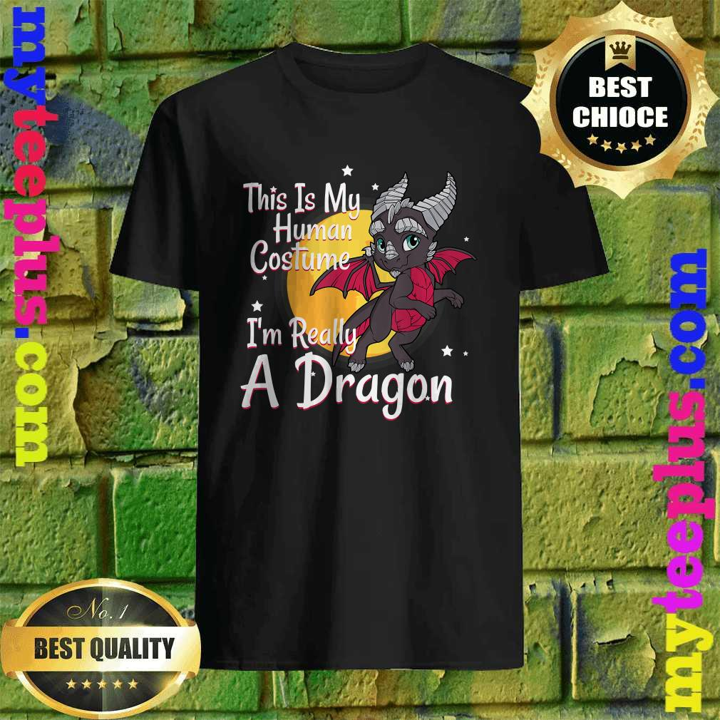 This Is My Human Costume I'm Really A Dragon T-Shirt
