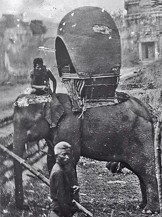 Thailand elephant late 19th Century