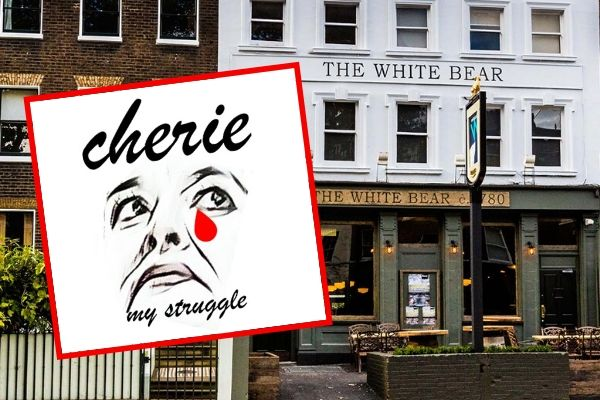 Cherie - My Struggle is a gossipy memoir of Cherie Blair