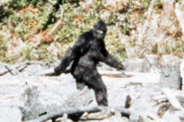 Bigfoot captured on film in 1967