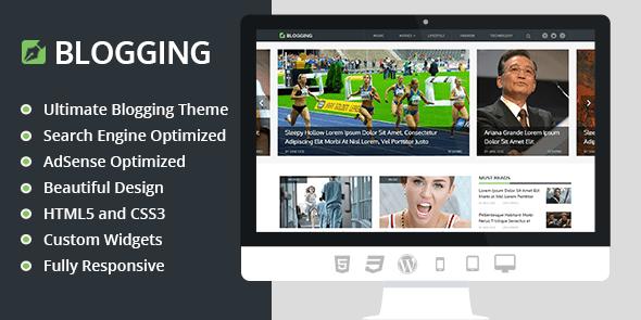 premium blogging wordpress theme