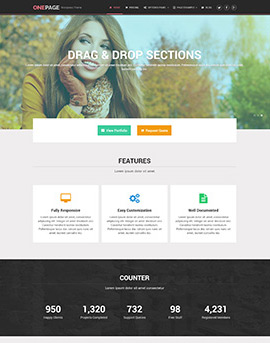 Wordpress Themes OnePage