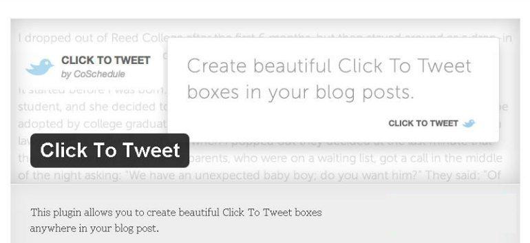 essential-wordpress-plugins-click-to-tweet