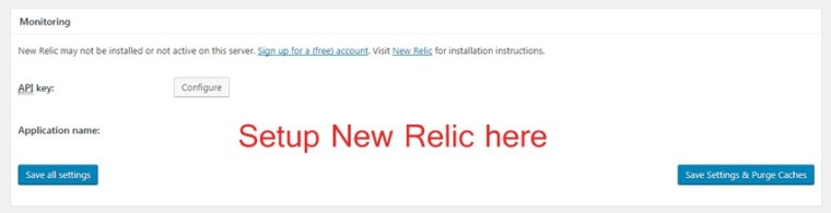 setup new relic settings
