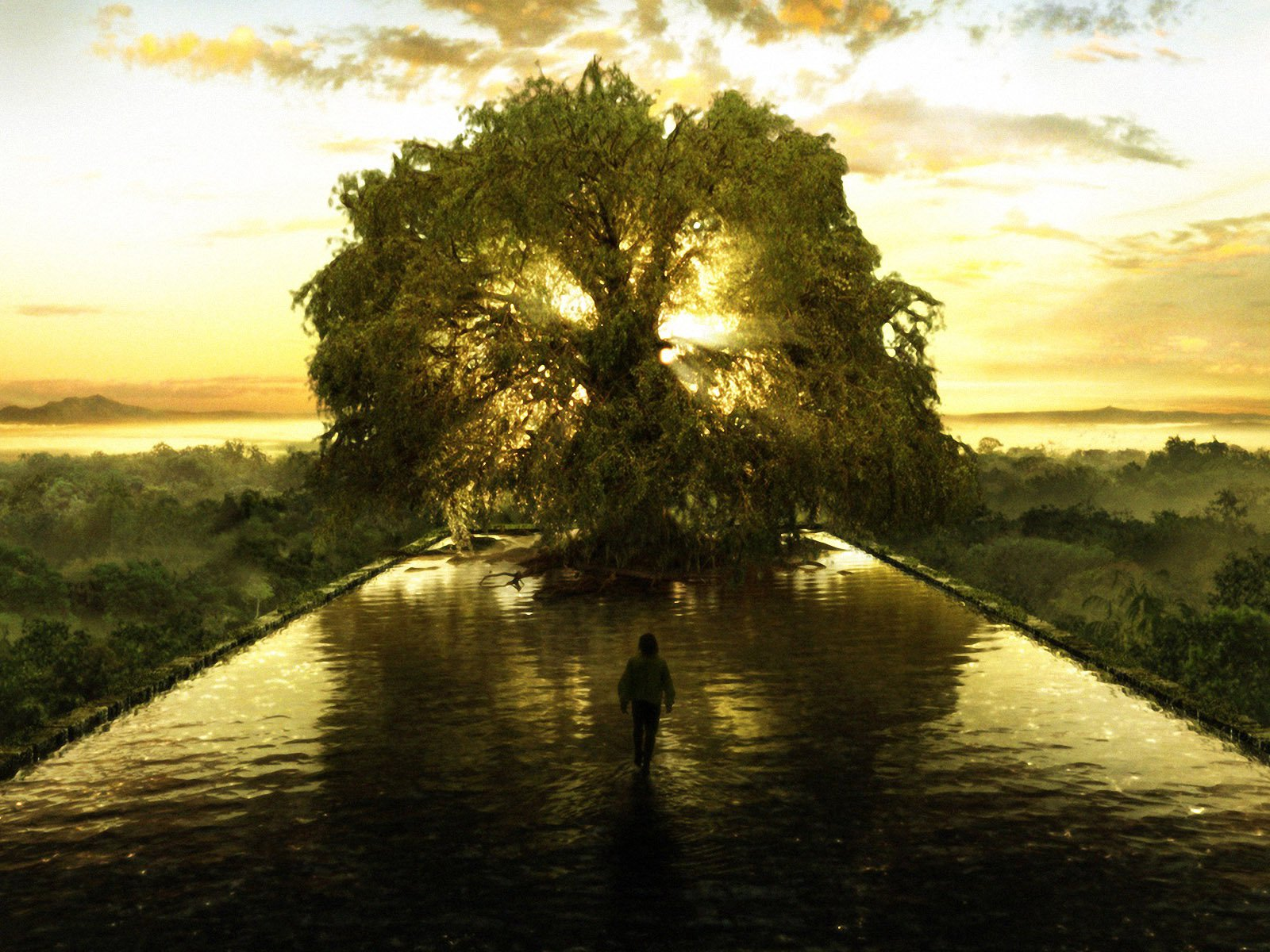 Image result for tree of life and death