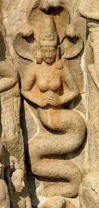 http://mythologica.fr/hindou/pic/naga.jpg
