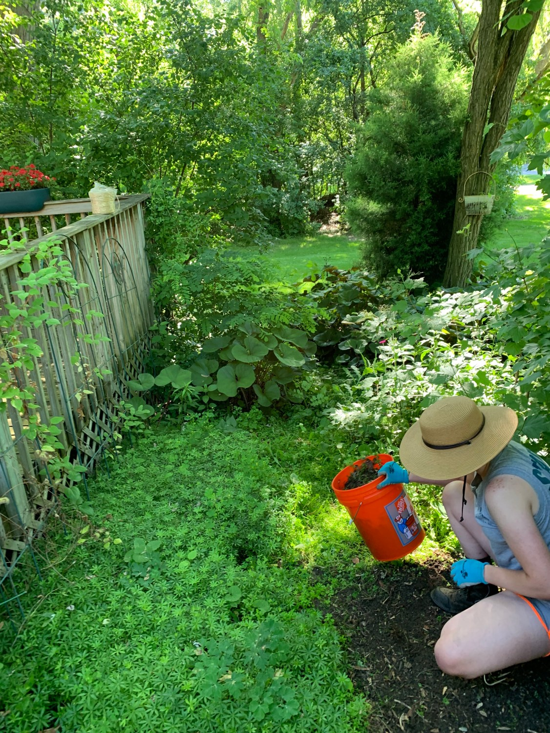 team member kneeling and holding a bucket as they work in a shaded garden bed