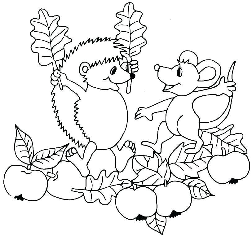 20 Der Besten Ideen Für Ausmalbilder Herbst Drachen