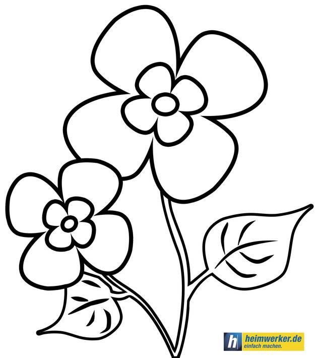 20 Besten Malvorlagen Blumen Ranken Kostenlos - Beste