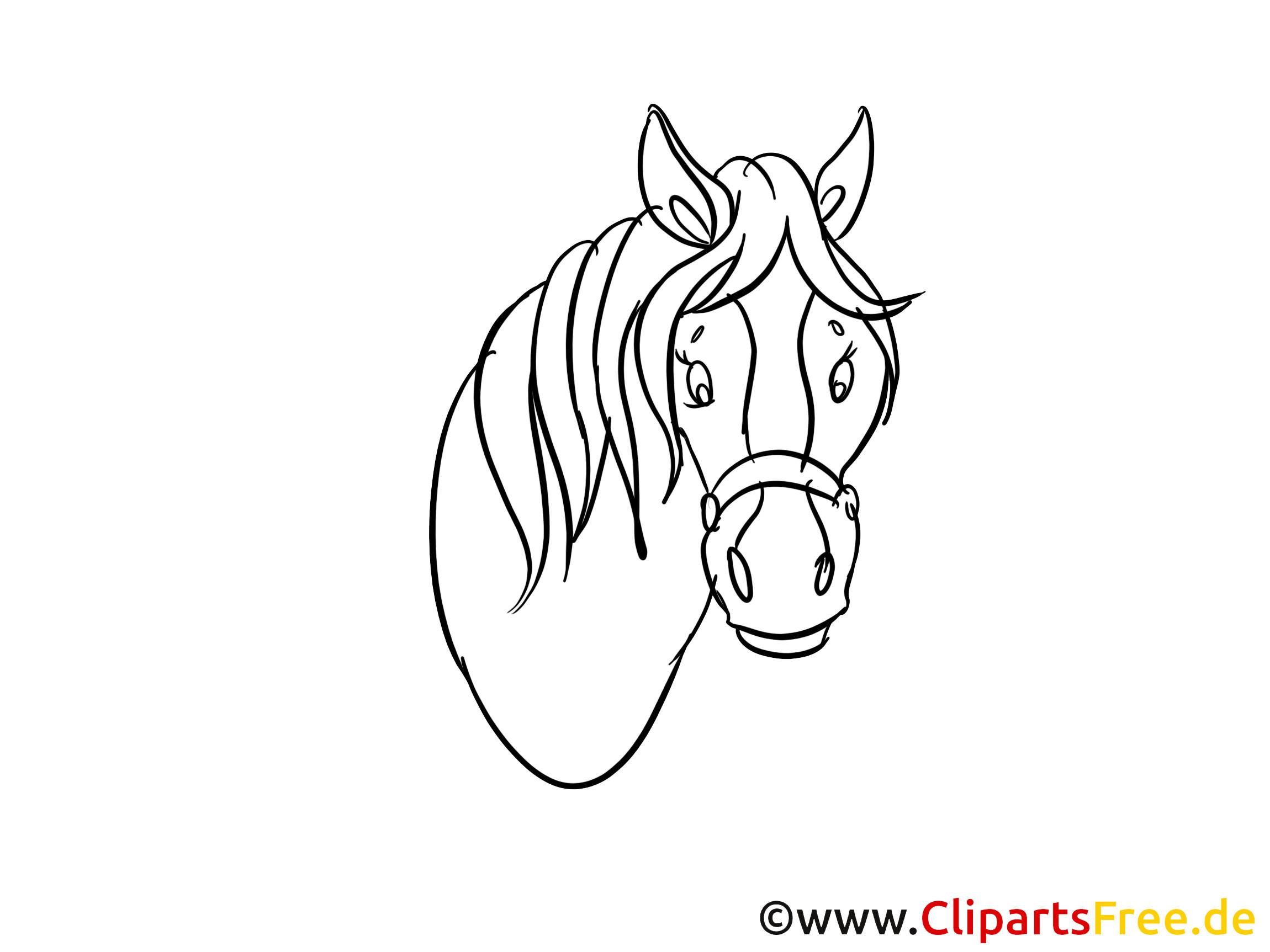 20 Der Besten Ideen Für Pferdekopf Ausmalbilder - Beste