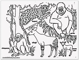 Die Besten Ideen Für Ausmalbilder Dschungeltiere   Beste ...