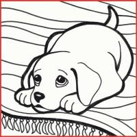 20 Der Besten Ideen Für Ausmalbilder Hundewelpen   Beste ...