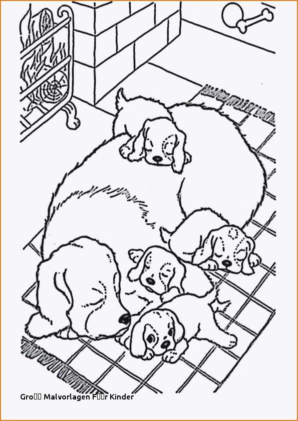 20 Der Besten Ideen Für Ausmalbilder Hundewelpen - Beste