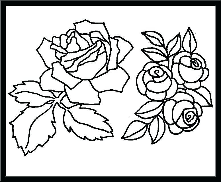 Malvorlage Rose Einfach
