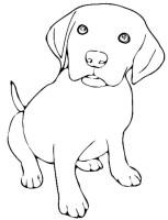 Beste 20 Hundewelpen Ausmalbilder   Beste Wohnkultur ...