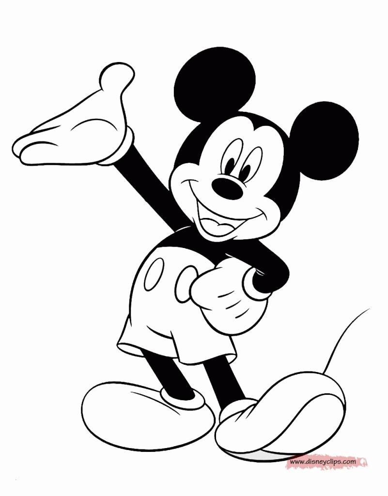 20 Besten Ideen Malvorlagen Mickey Mouse - Beste