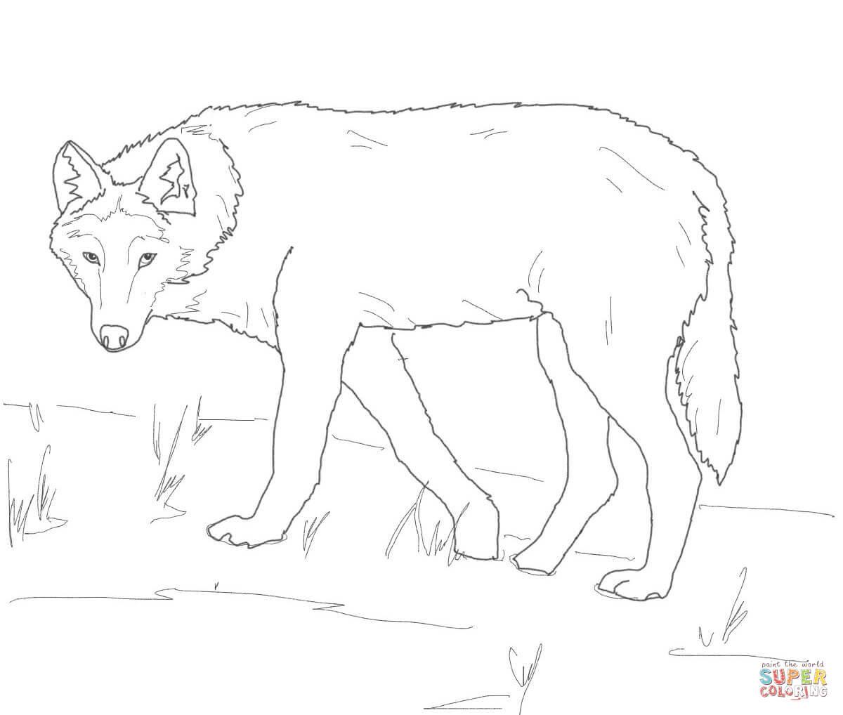 20 Ideen Für Ausmalbilder Wolf Kopf - Beste Wohnkultur