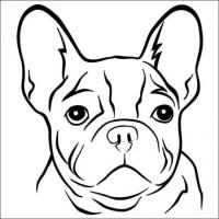 20 Besten Ideen Bulldog Ausmalbilder   Beste Wohnkultur ...