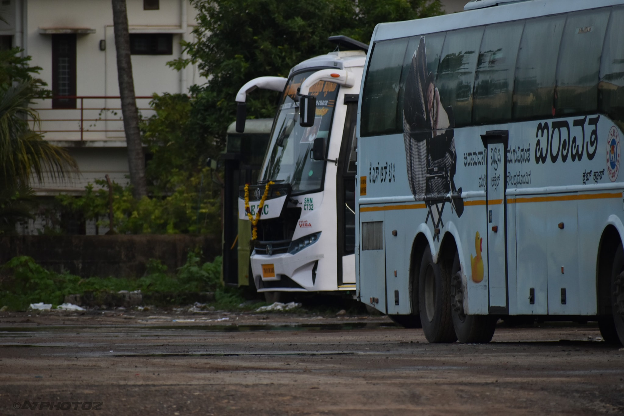 Tiruchendur To Tirupati SETC Non AC Bus Service Timings