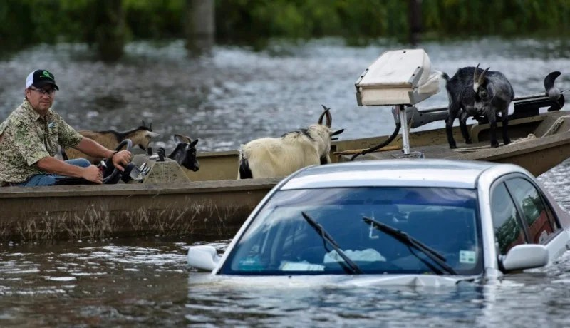 Facts about flood insurance in Louisiana