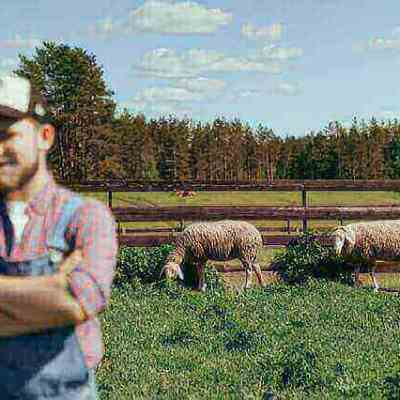 Facts about farm insurance you need to know