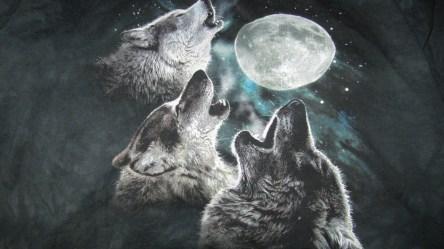 3 Wolf Moon art of modern living