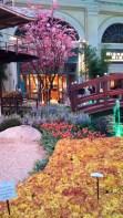 Bellagio Japanese flower garden
