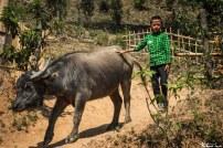 Birmanie86