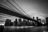New York39