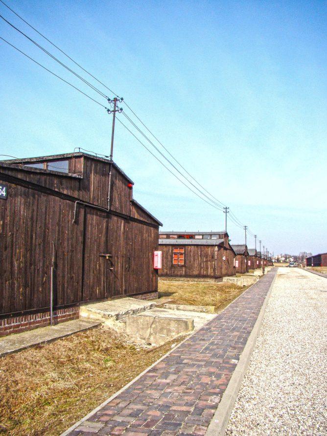 15 Majdanek