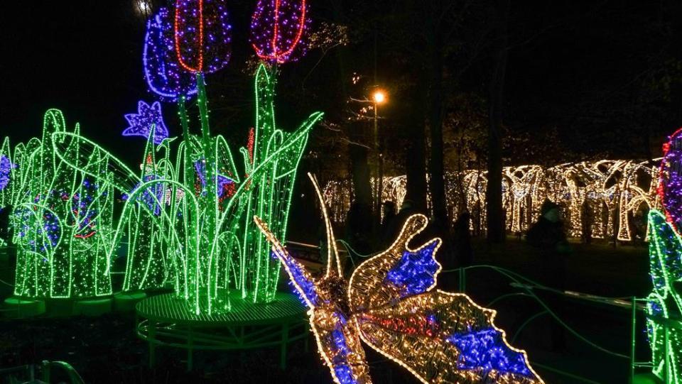 Ogród Światła w Wilanowie