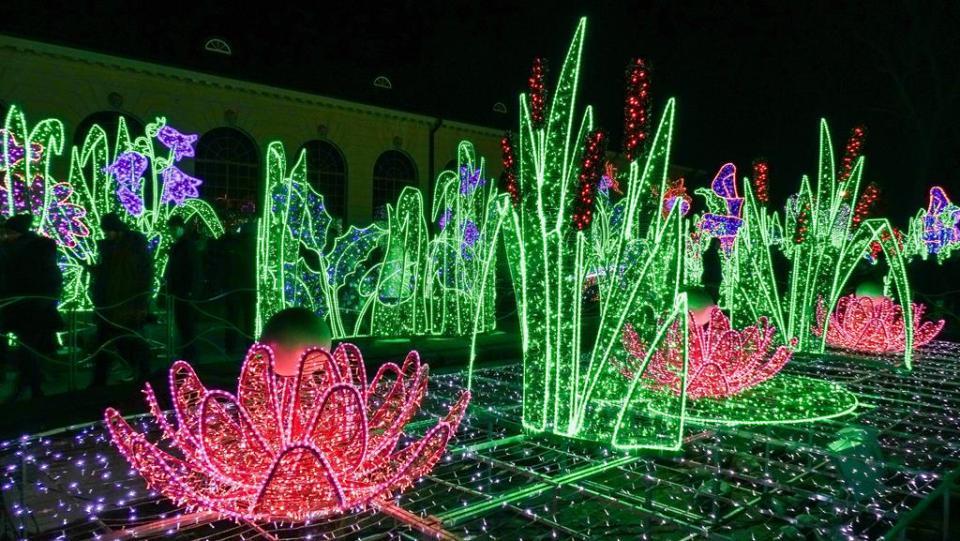 Królewski Ogród światła W Wilanowie My Travel Blog