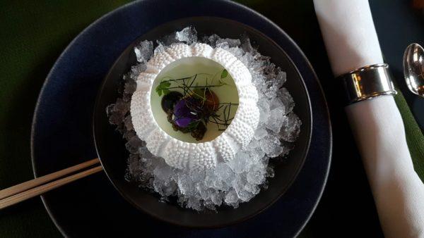 Taiko wasabi conservatorium hotel