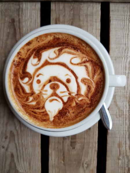 De leukste tentjes met de lekkerste decafe koffie in Amsterdam