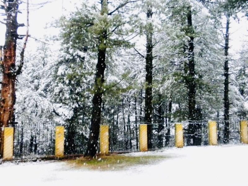 snowfall in Pahalgam