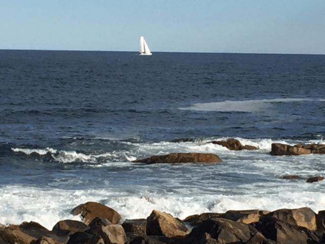 Bass Rocks Ocean Inn mytravelingkids.com