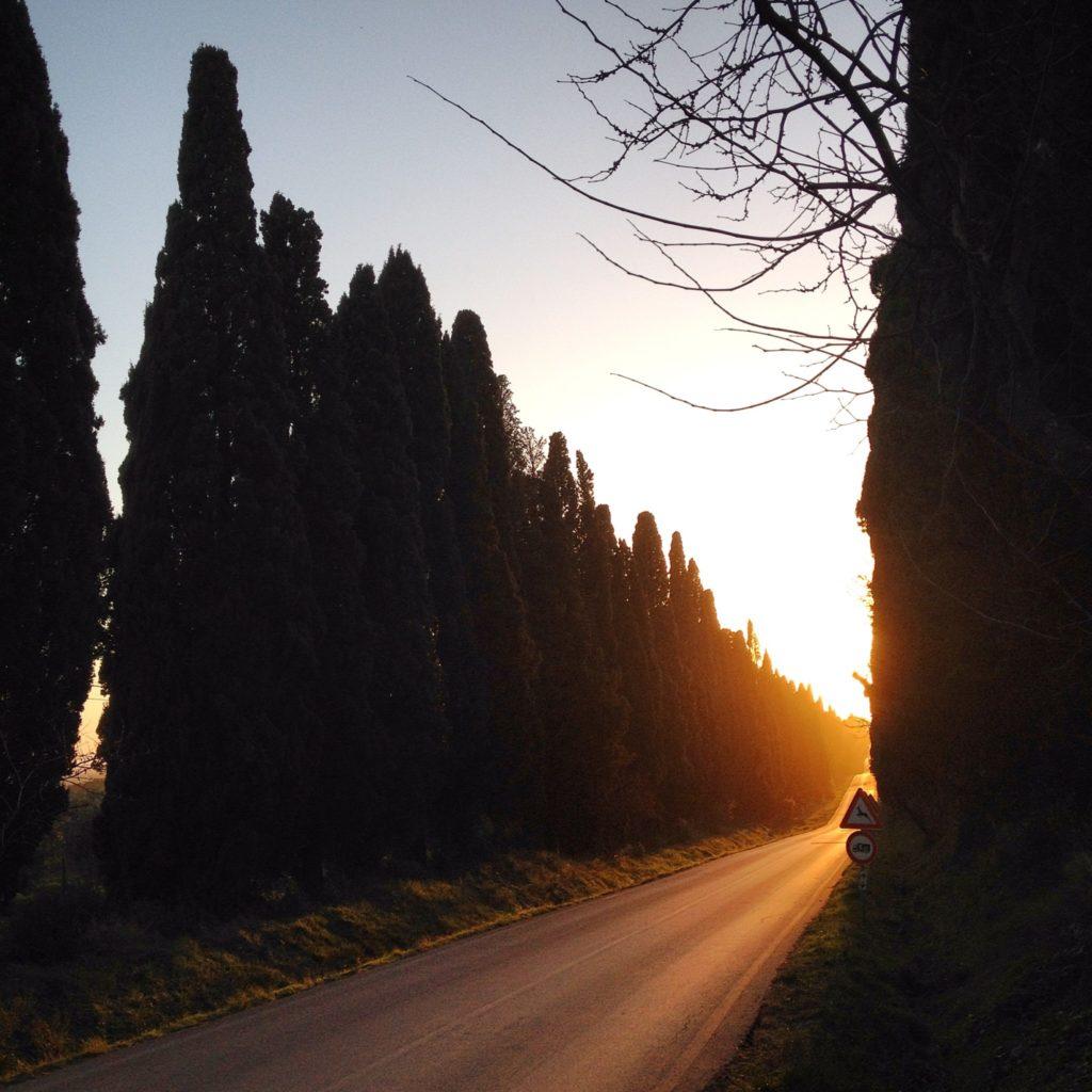 Sunset Bolgheri Etruscan Coast