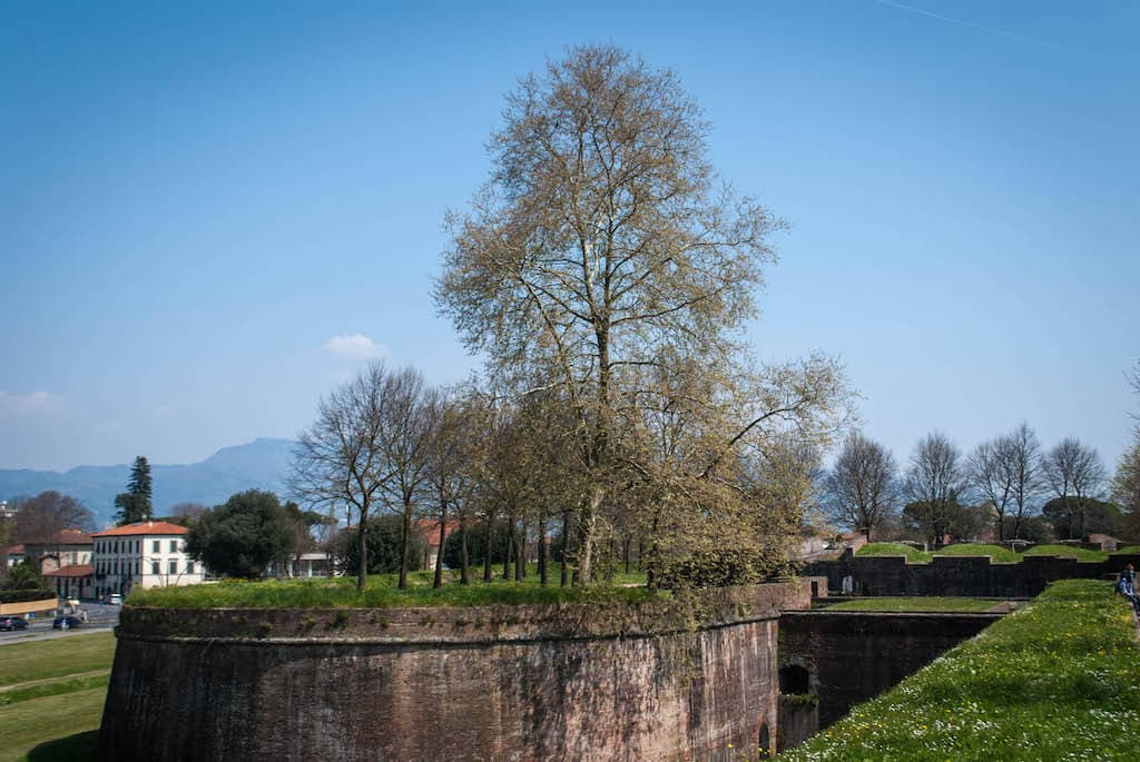 Walls of Lucca
