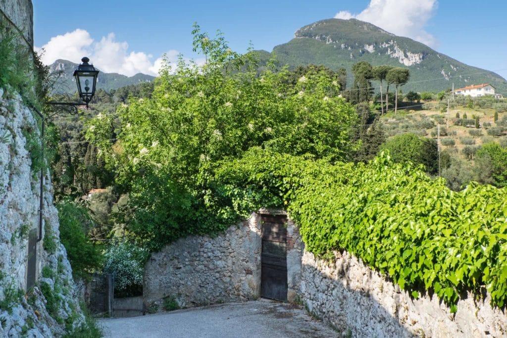 Monteggiori the walls