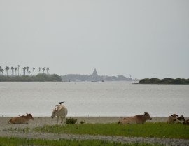 Island temple...