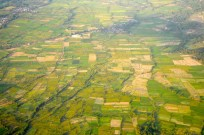 Lombok rice fields from the air...so green...