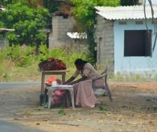 Roadside rambutan seller...