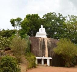 Big Buddha....