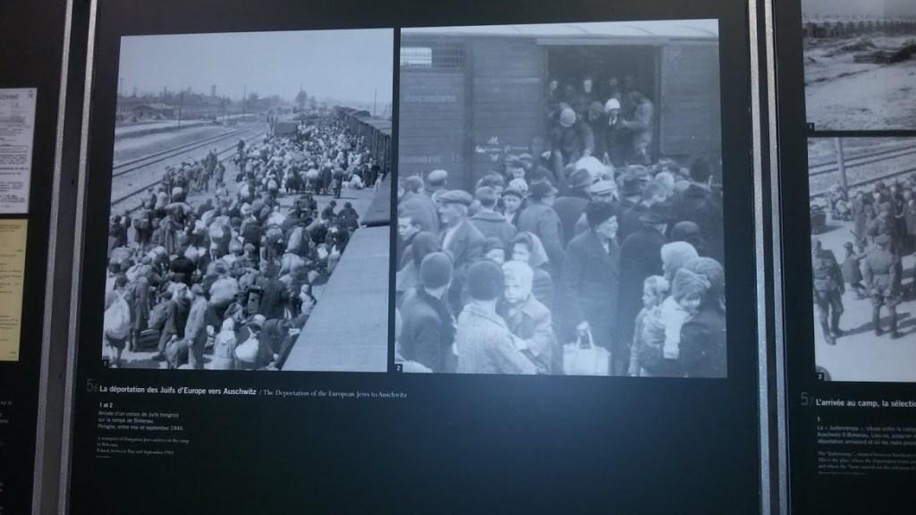 Photos on display