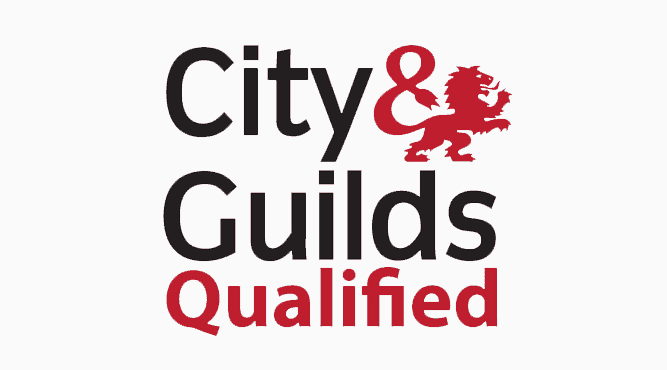 city and guilds qualified electricians
