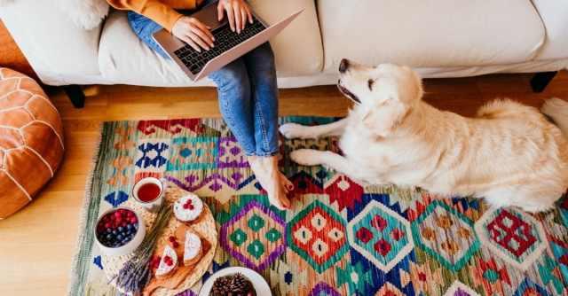 Dog-Friendly Furniture