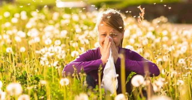 allergies the next pandemic