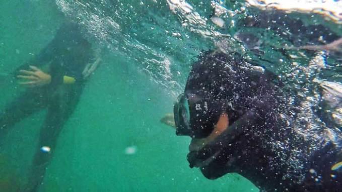 snorkelling puerto madryn