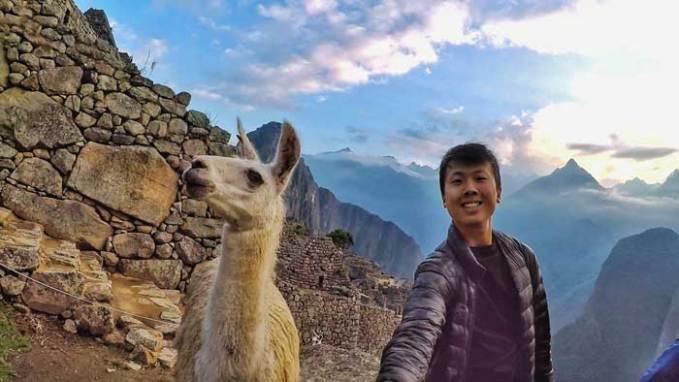 llama-selfie