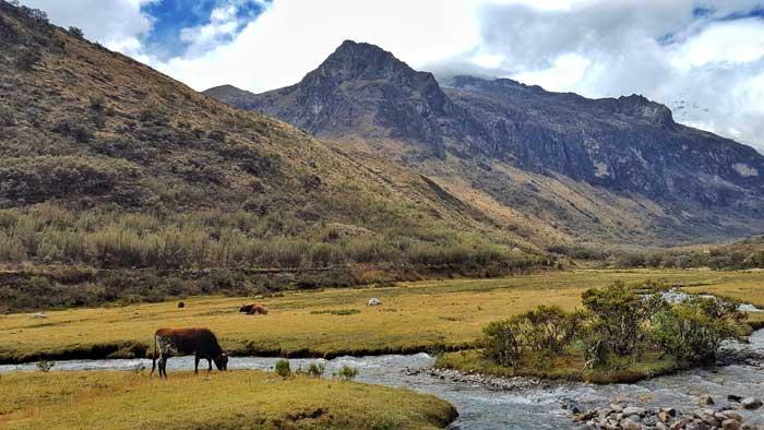 postcard-landscape